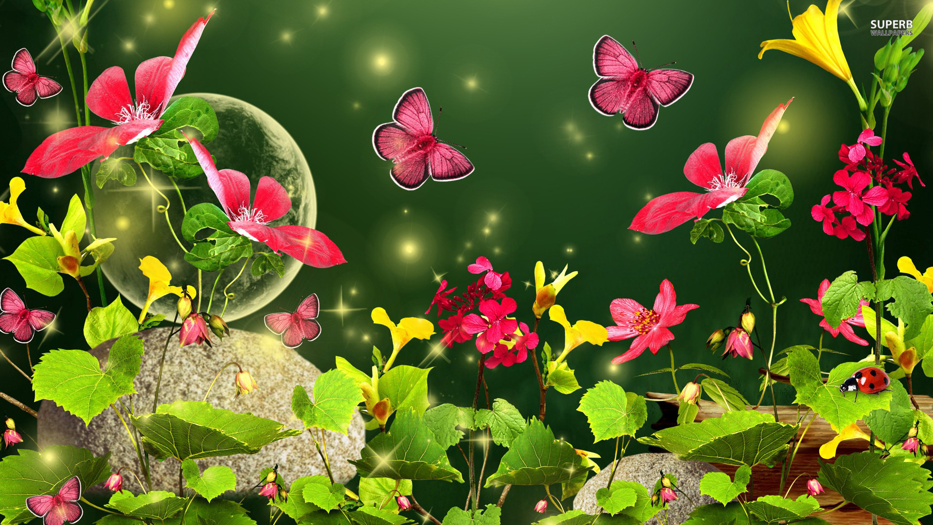 Butterflies images Awesome Butterflies HD wallpaper and background 1920x1080