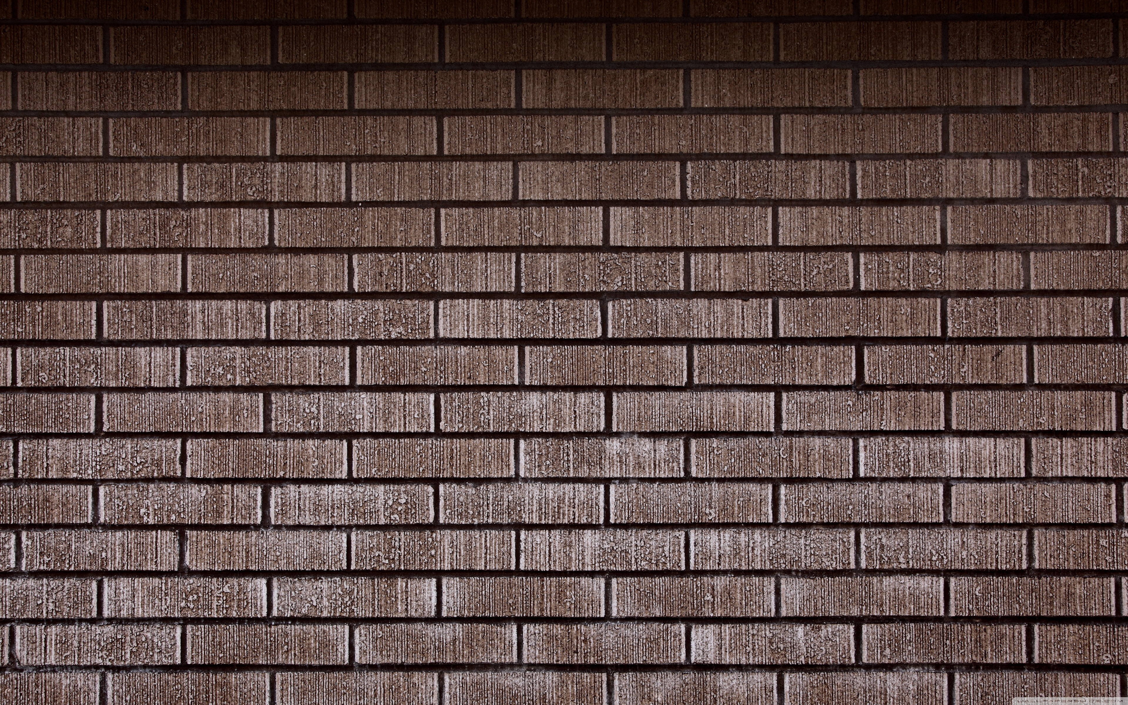 22 Brick Wall Wallpapers On Wallpapersafari