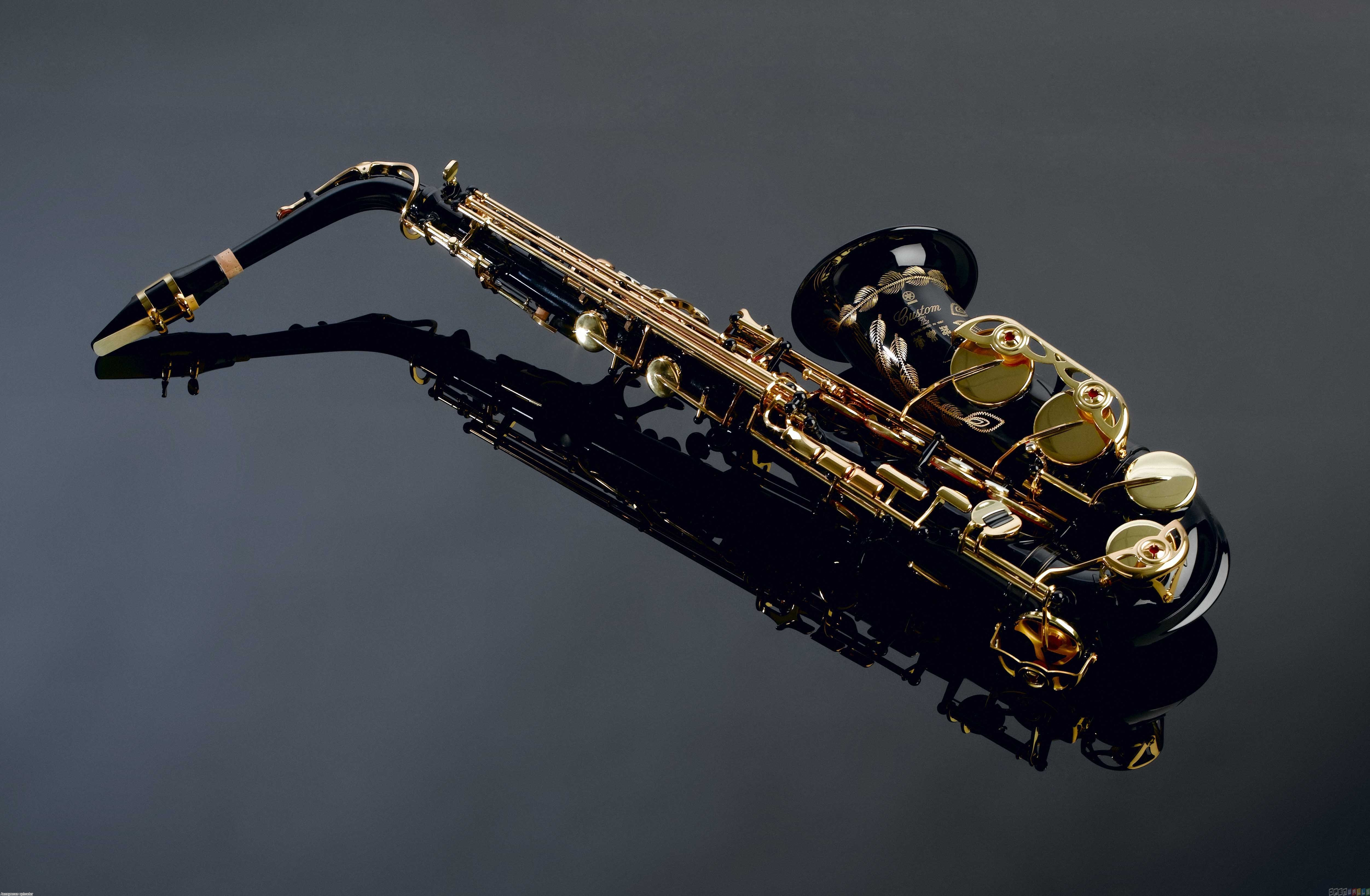 title saxophone uploader anonymous licence category others tags sax 5007x3277