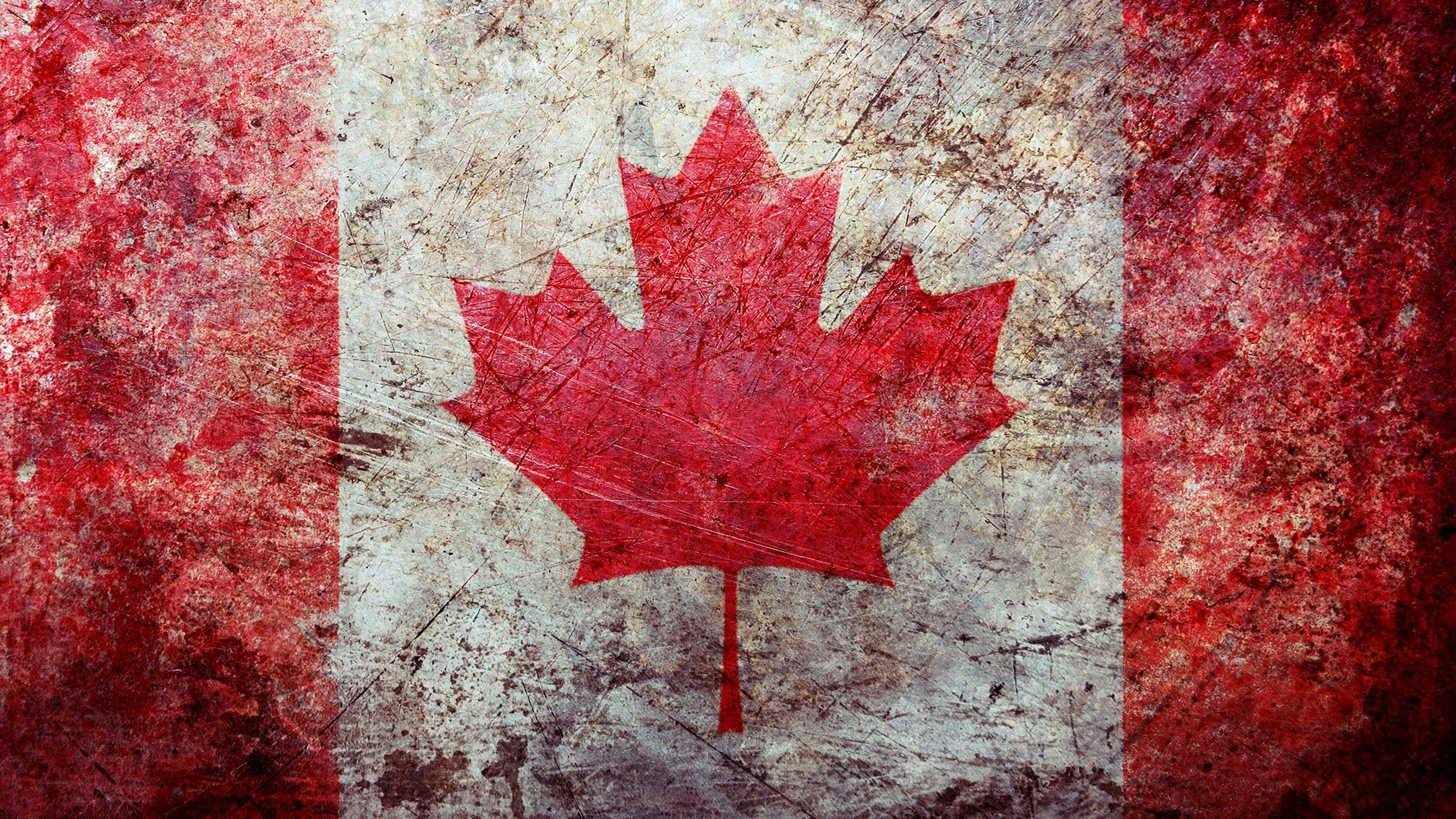 Download 1080p Canada Wallpapers The Home Of The Grizzly Bear 1920x1080