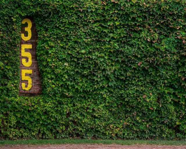 47 Wrigley Field Ivy Wallpaper On Wallpapersafari