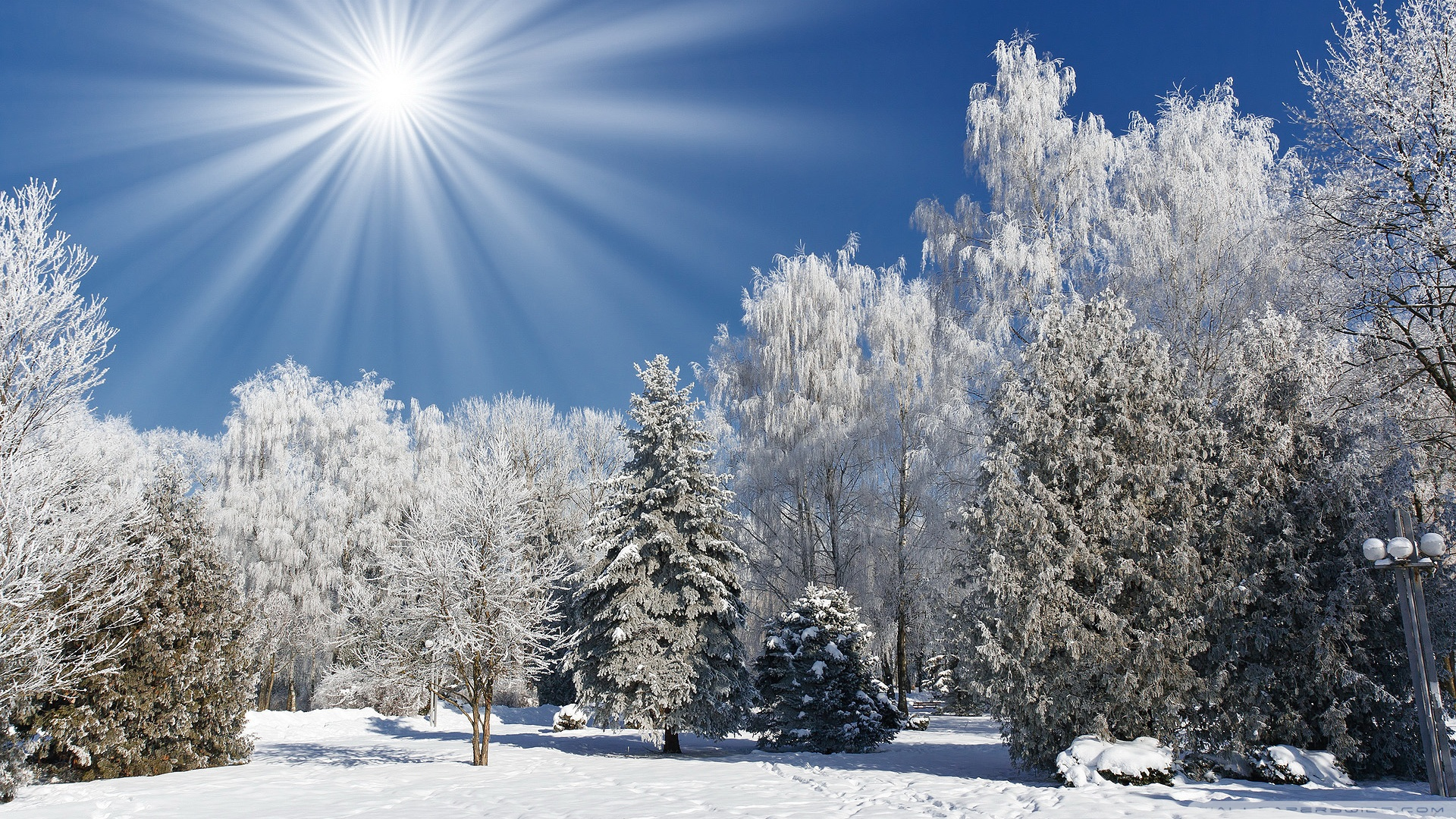 Sunny Winter Day Wallpaper - WallpaperSafari  Winter Sunny Beach