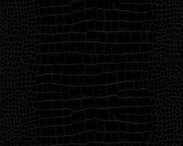 Black Crocodile 750x600