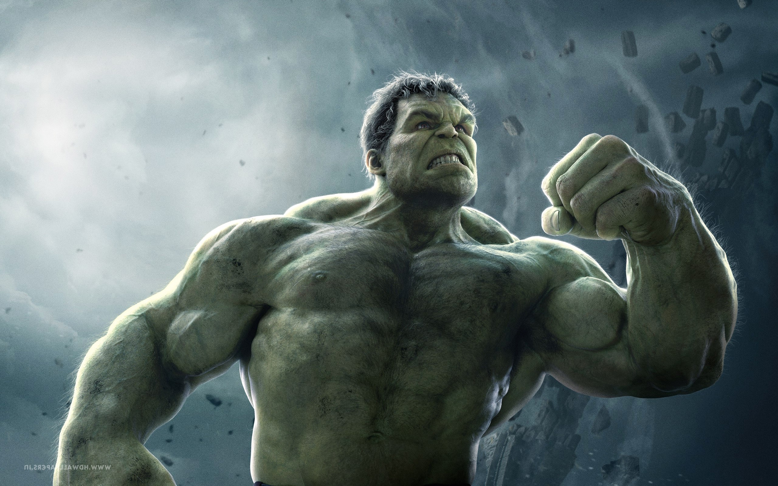 74 Hd Hulk Wallpapers on WallpaperPlay 2560x1600