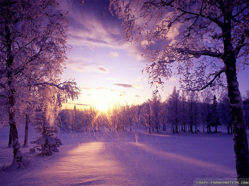 winter is coming wallpapers crazy frankenstein wallpaper falling snow 1024x768
