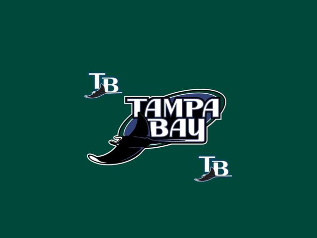 Tampa Bay Raysbaseballlogorayssportsportsbaseball team 640x480