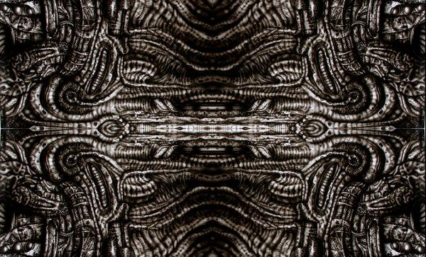 Biomechanical Wallpaper  WallpaperSafari