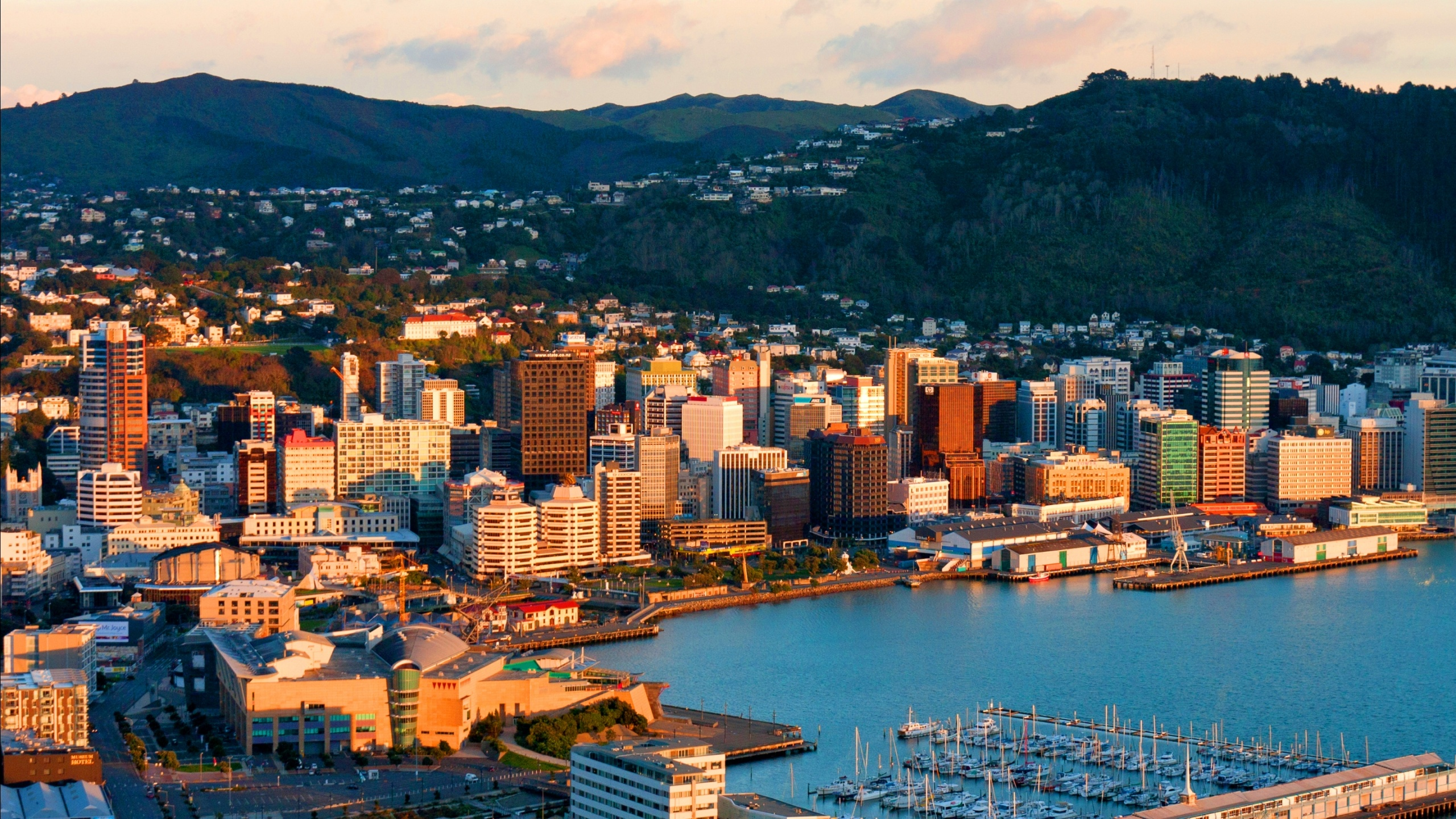 Wellington City New Zealand Wallpapers   2560x1440   1509535 2560x1440