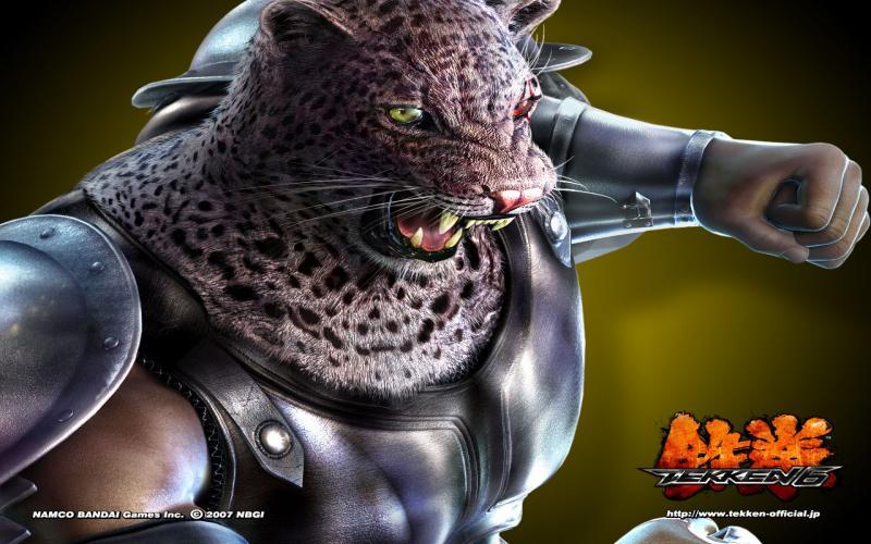 HD Armor King Tekken 6 Wallpaper Download   15770 800x500