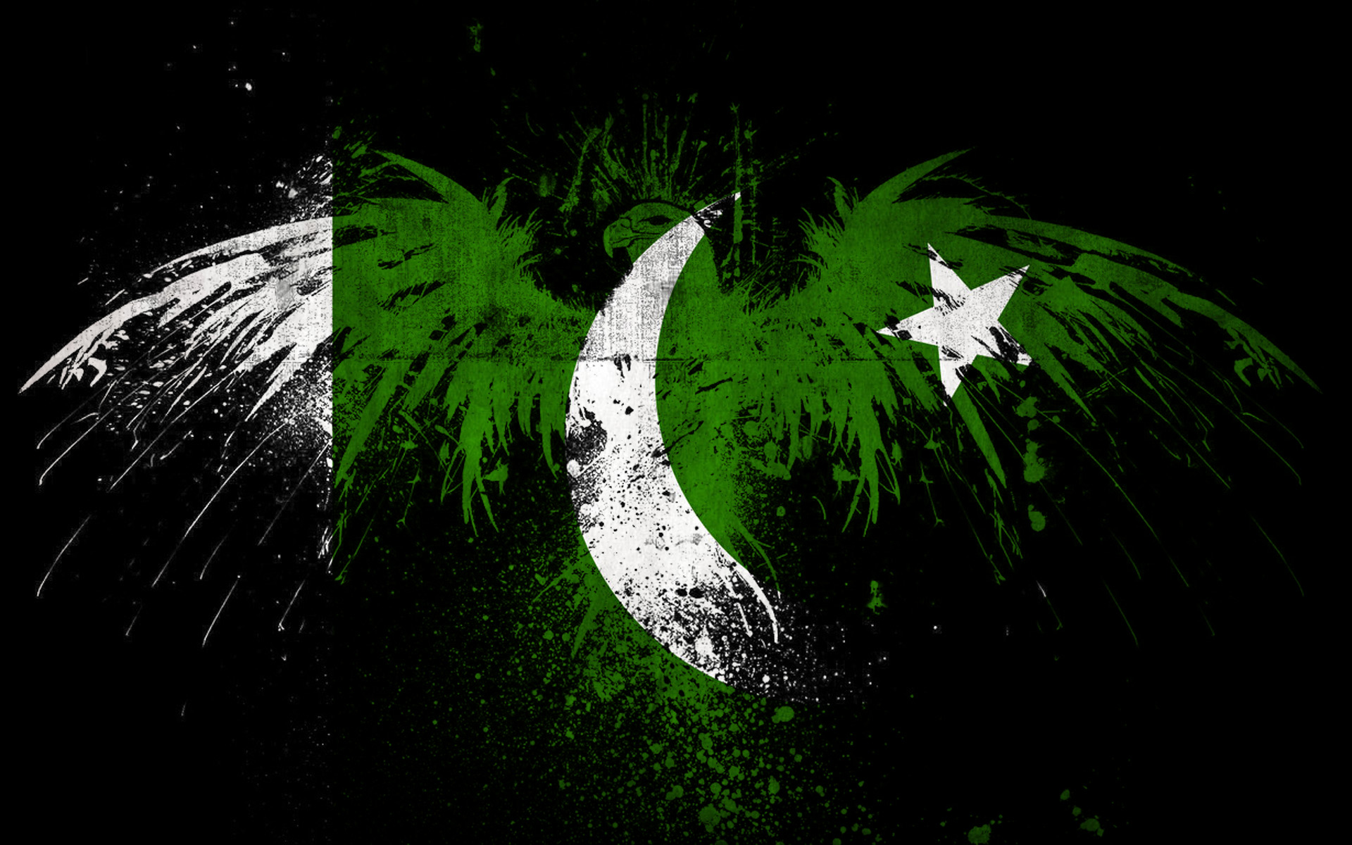 Download Pakistan Wallpapers With Complete Pakistani Culture 1920x1200