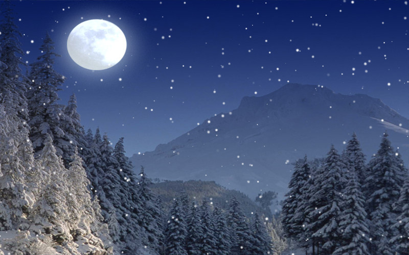 Falling snow animated wallpaper wallpapersafari - Free screensavers snowflakes falling ...