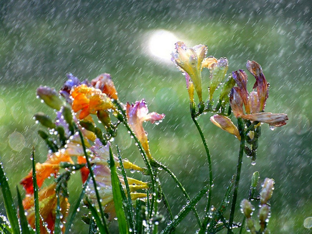 LORD for rain in the springtime it is the LORD who makes the storm 1024x768