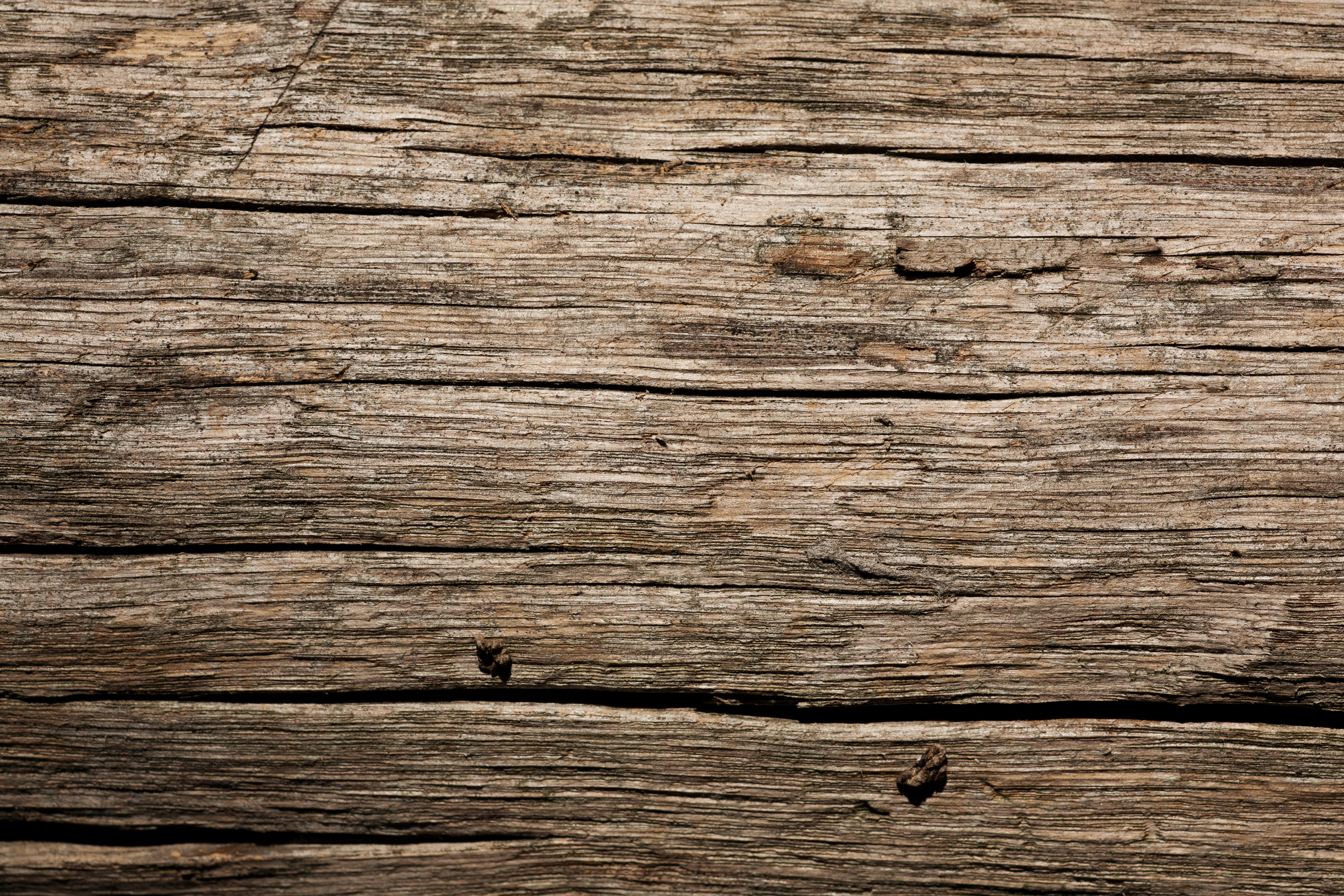 Dry Old Wood Texture Wild Textures No Bollocs Just Textures 3000x2000