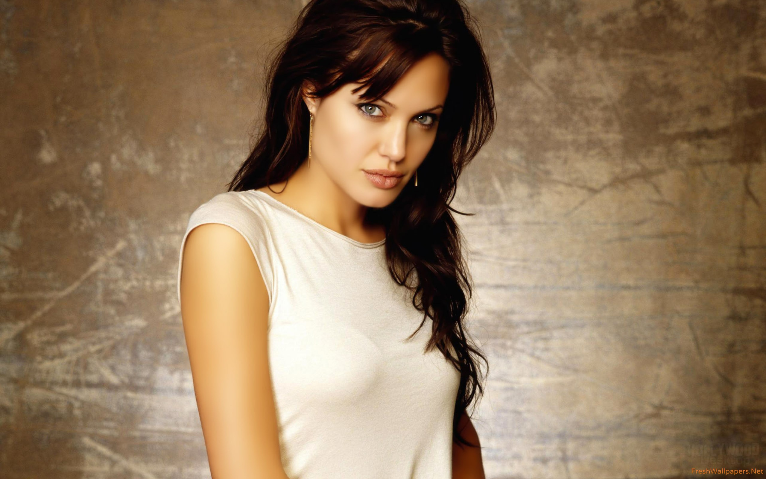 angelina jolie mobo wallpapers Freshwallpapers 2560x1600