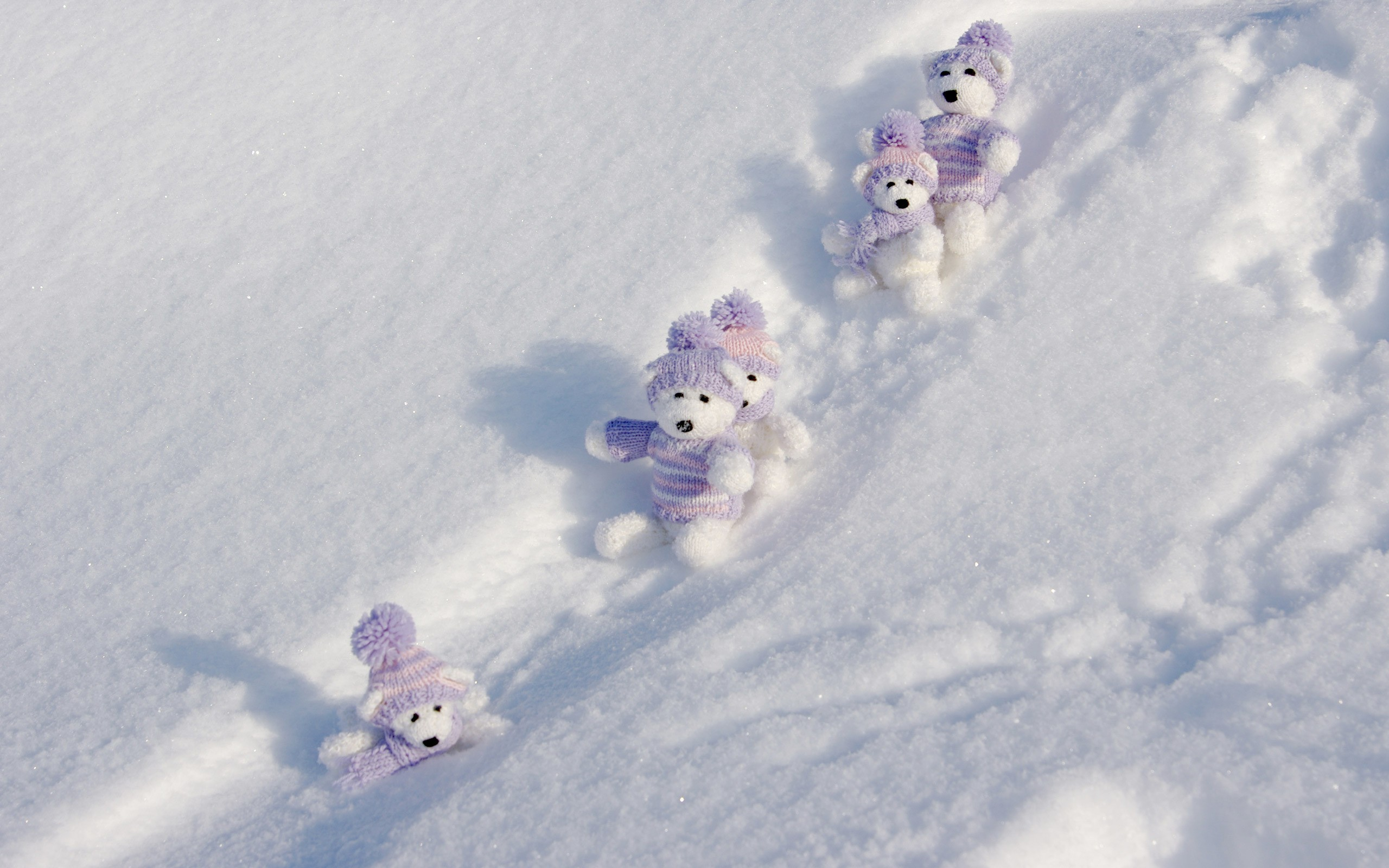 Winter Teddy Bears wallpapers Winter Teddy Bears stock photos 2560x1600