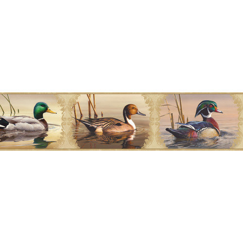 Chesapeake Winning Waterfowl Portrait Blocks Wildlife Border Wallpaper 500x500