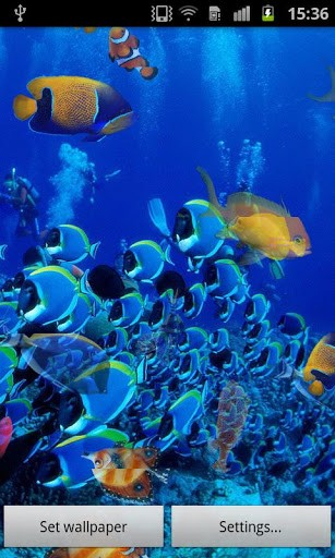 Ms grande   Captura de pantalla de Peces de Oceano Fondo Animado 307x512