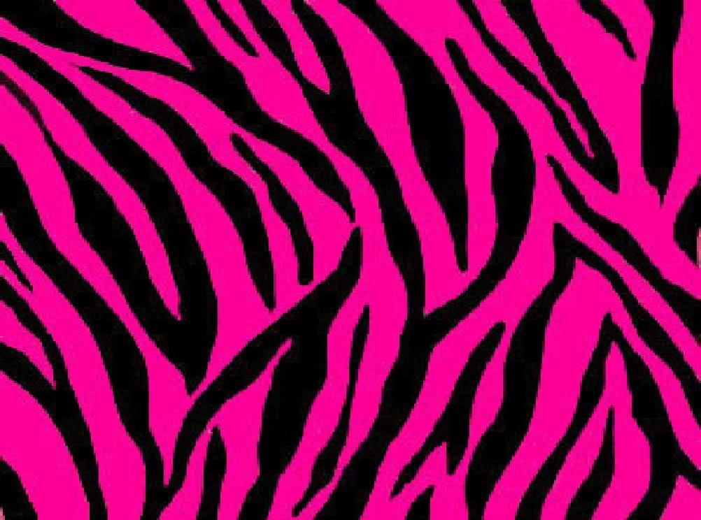 un desktop stripe pink zebra File vettoriale   ForWallpapercom 1002x744