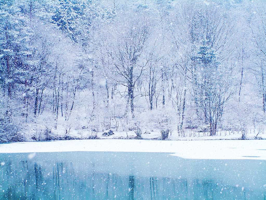 Winter Snow Backgrounds 1024x768