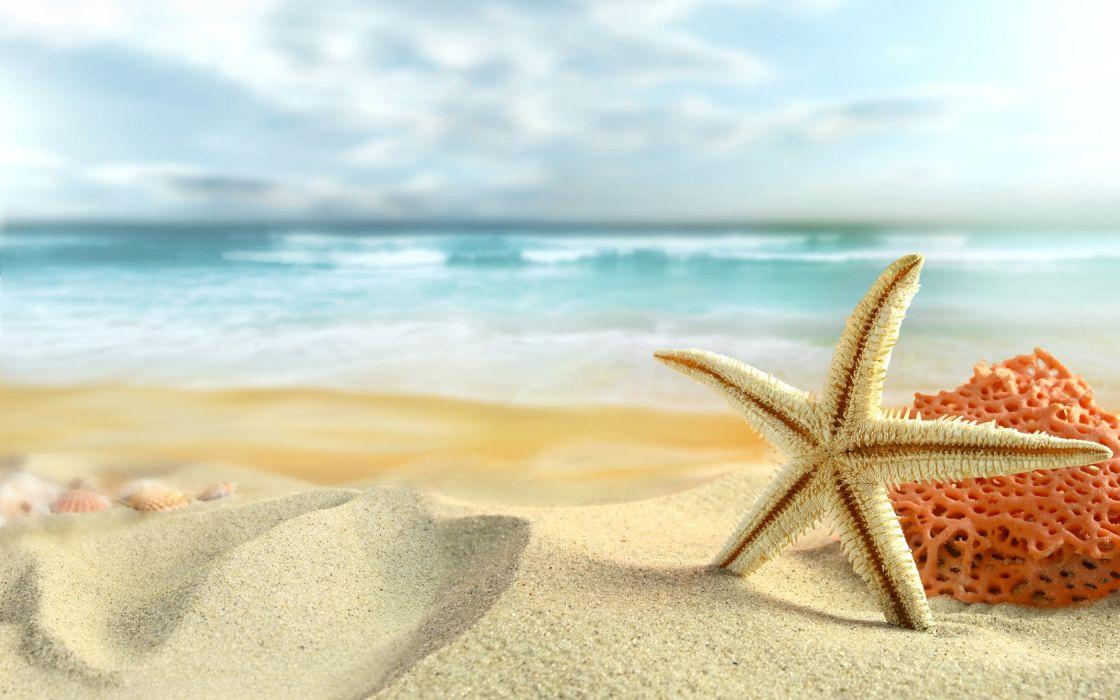 Ocean sand stars starfish sea beaches wallpaper 1680x1050 1120x700
