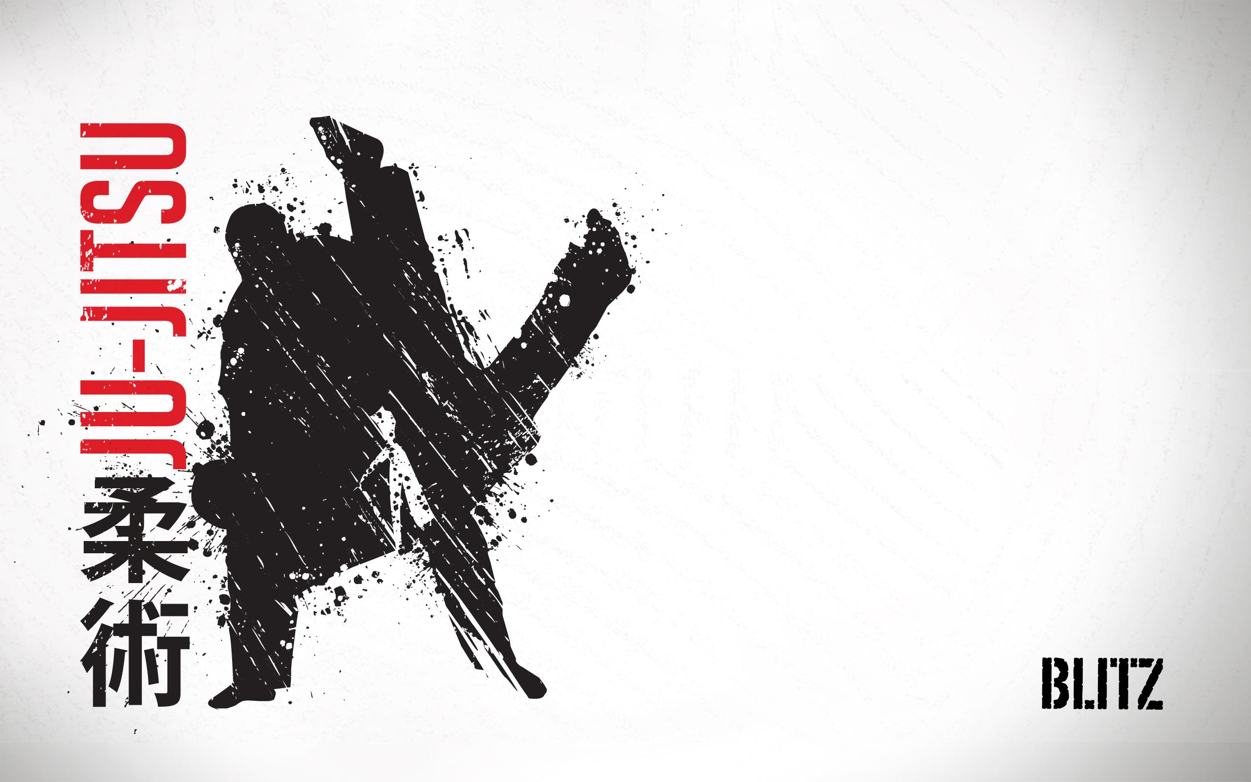 Blitz Sport Jujitsu Wallpaper 2560x1600jpg 25602151600 2560x1600