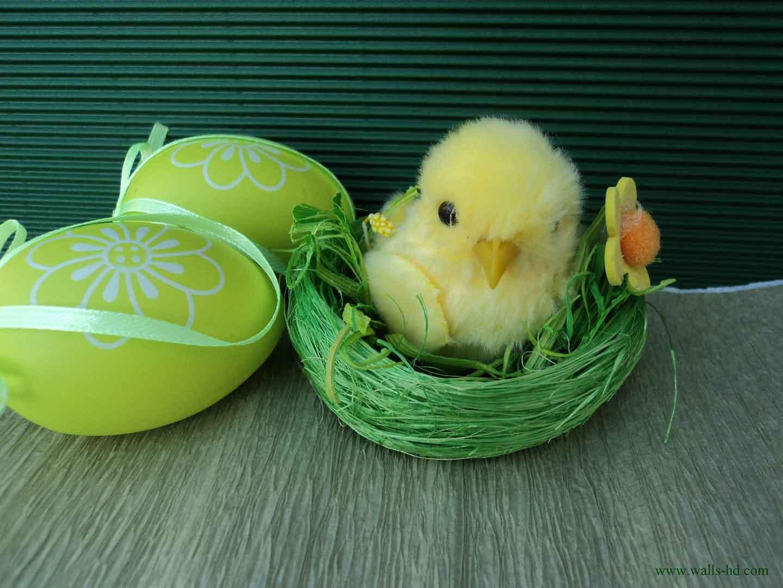 Easter Chick Wallpaper Wallpapersafari