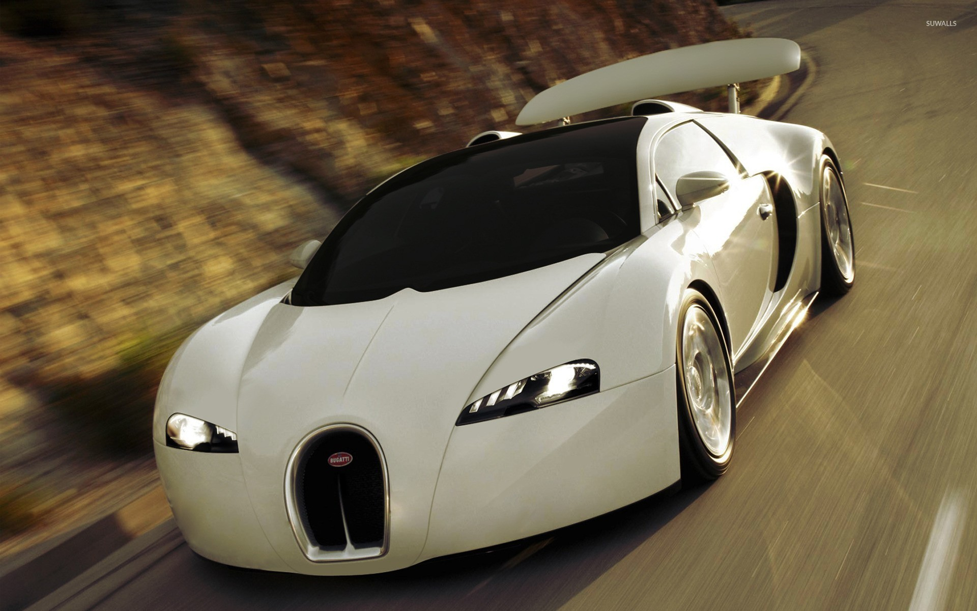 Bugatti Veyron EB 164 [2] wallpaper   Car wallpapers   7843 1920x1200
