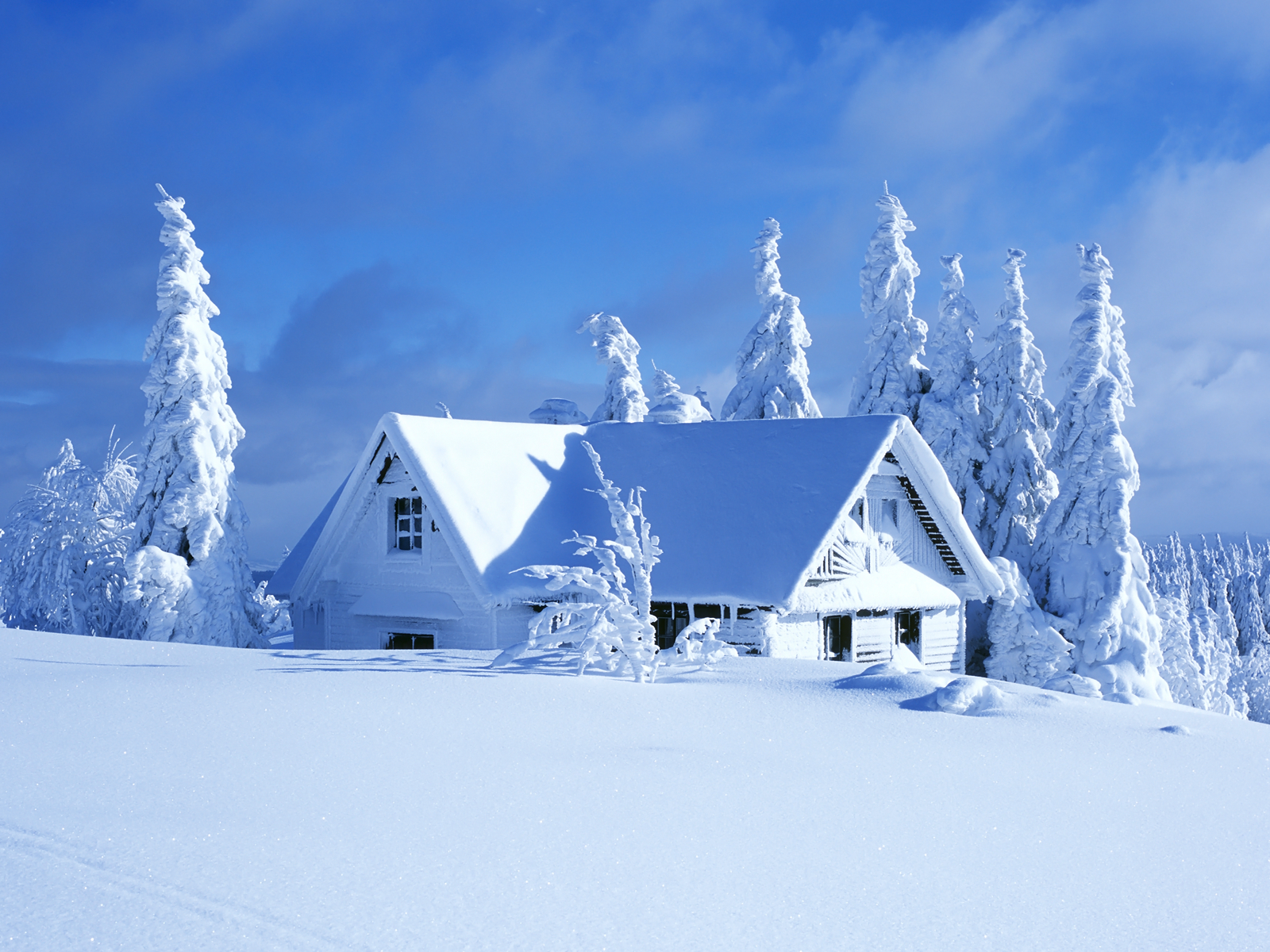 Its Cold Outside Winter Snow wallpaper The Long Goodbye 1600x1200
