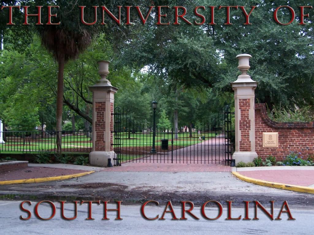 The University of South Carolina wallpaper   CockyTalk 1024x768