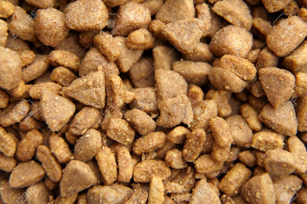 Dry Crisp Pet Food As Background Stock Photo Picture And Royalty 1300x866