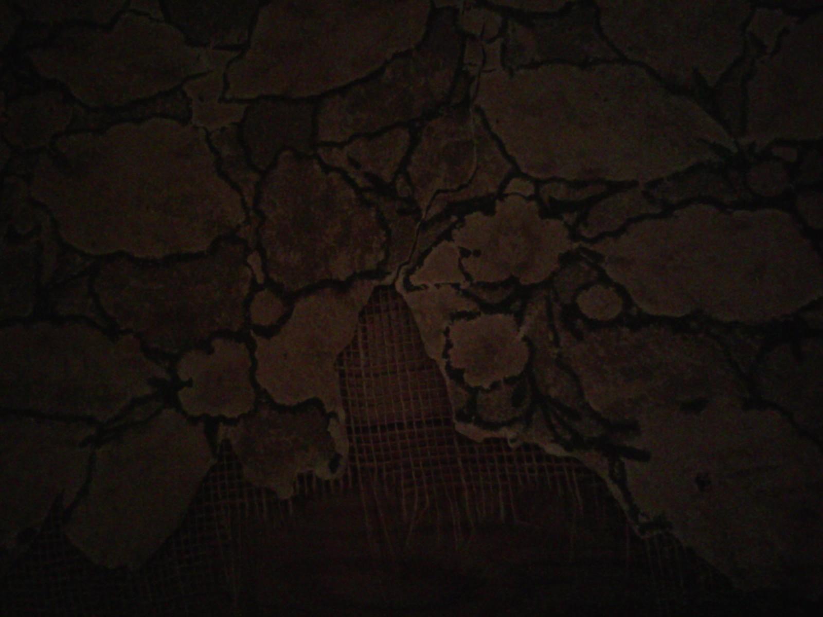 Dark peeling art nouveau wallpaper YEAR OF BEAUTY 1600x1200