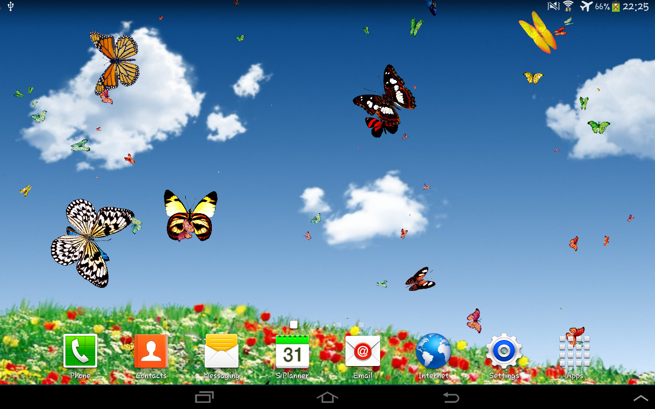 butterflies settings for butterflies type number size speed you 1280x800