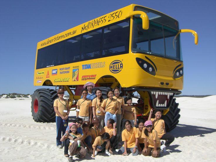 wallpaper more trucks busses monster trucks 4x4 s bus stuff buses 736x552