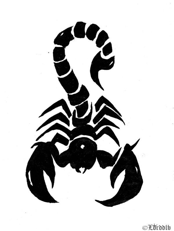 Free Download Dessin Et Coloriages Tte De Mort Imprimer Pour Colorier 600x795 For Your Desktop Mobile Tablet Explore 36 Tribal Scorpion Wallpaper Tribal Scorpion Wallpaper Scorpion Wallpapers Scorpion Wallpaper