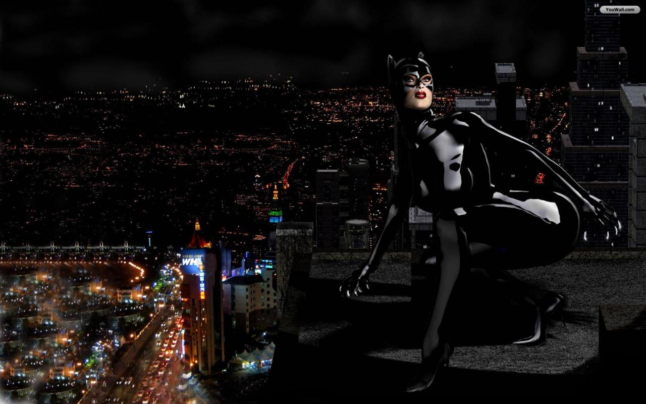 Catwoman Wallpaper   wallpaperwallpapersfree wallpaperphotodesktop 1280x800