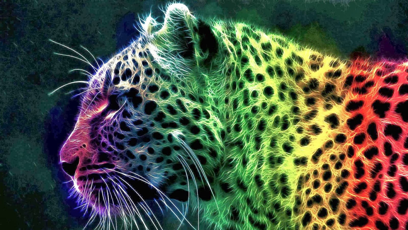Rainbow Cheetah Wallpaper Best Windows 7 Wallpapers 1600x900