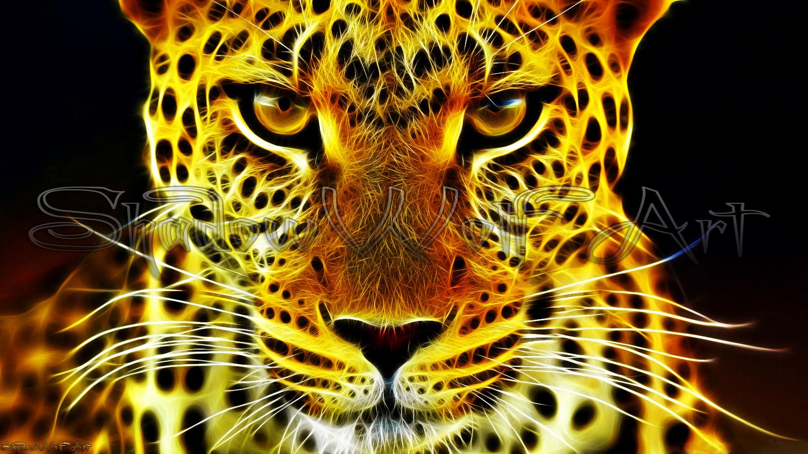 Leopard wallpaper by ShadowWolf 666 1600x900