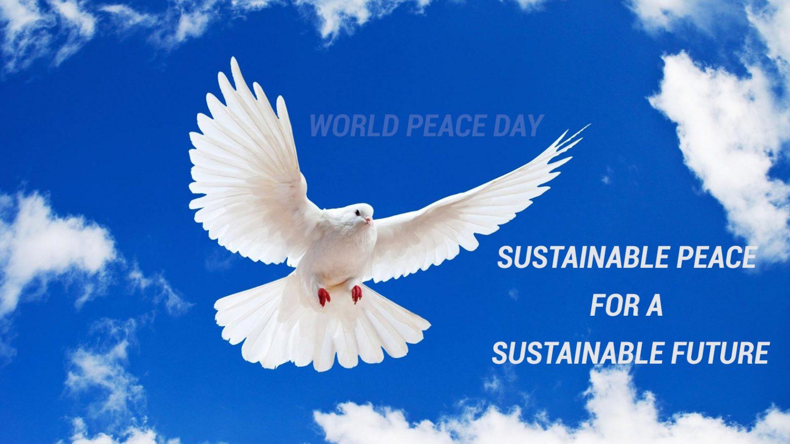 International World Peace Day Dove 4K Uhd Wallpaper   HD 1600x900