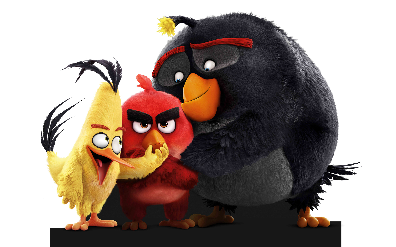 48 Angry Birds Movie Wallpaper On Wallpapersafari