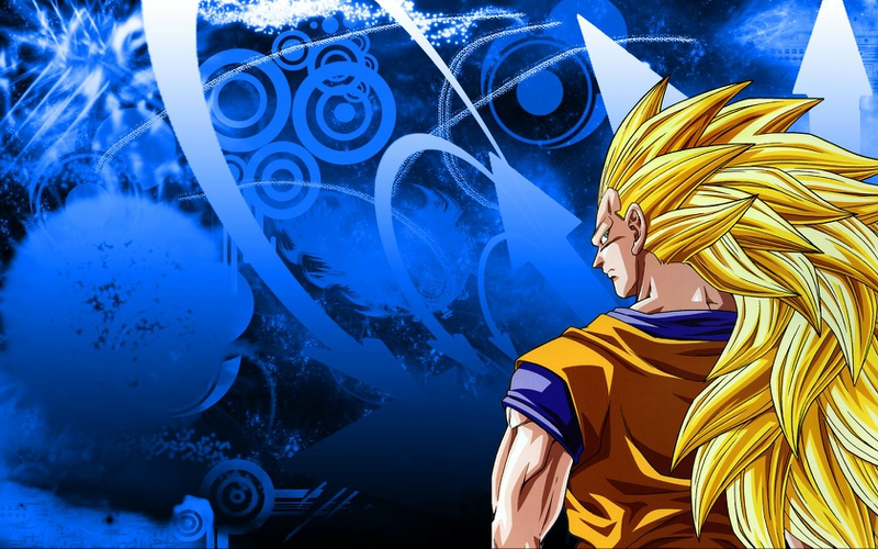 dragon ball z [goku wallpapers]   Taringa 800x500