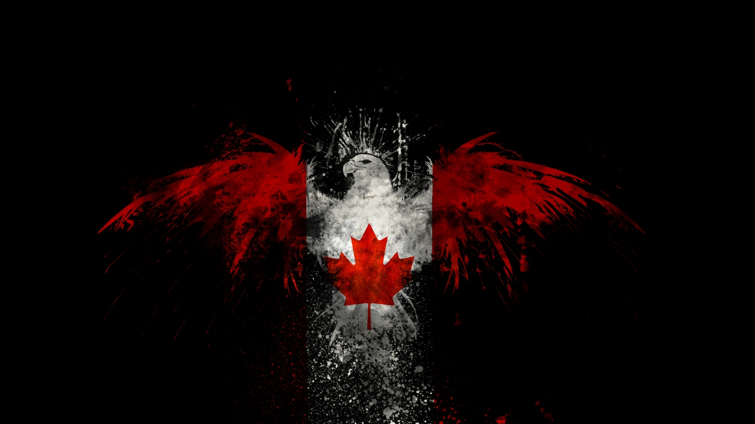 birds canada canadian flag 1920x1080 wallpaper Animals HD Wallpaper 2560x1440