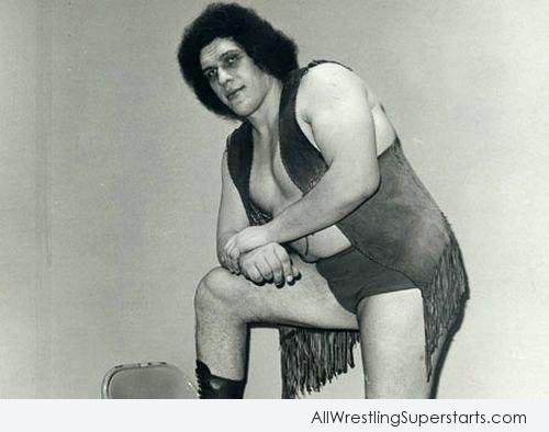 Andre The Giant Posed With Style   WWE Superstars WWE 500x394