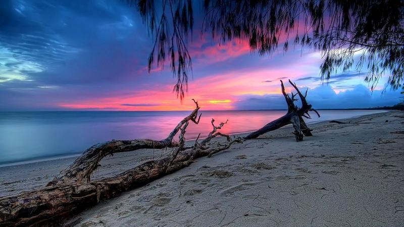 Pink Beach Sunset Wallpaper: Pink Sunset Wallpaper HD