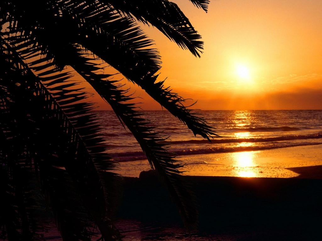 Madeira Beach Sunset St Pete Beach Floridajpgsleepin20on20beach 1024x768