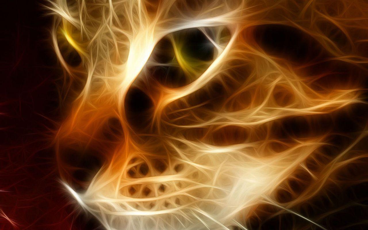 Beautiful Fire Cat HD Wallpaper Animals Wallpapers 1280x800