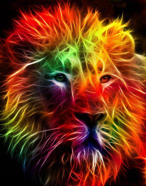 Imagens Reggae ~ Rainbow Lion Wallpaper WallpaperSafari