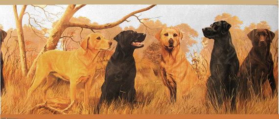 Wallpaper border with Labrador dogs CH7997BD by CARAUT on Etsy 570x243