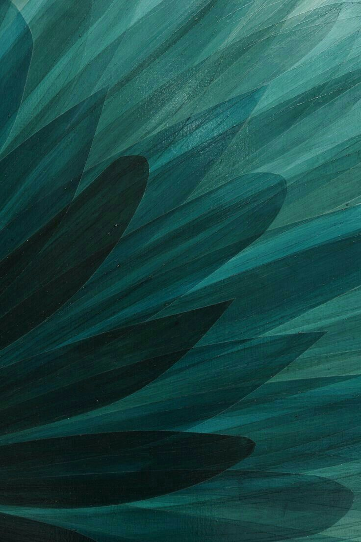 Quetzal Green Art illustration design Teal art Teal 736x1104