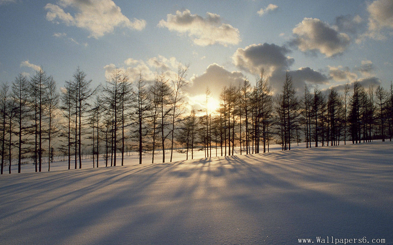 wallpapers dusk snow scenery dusk snow scenery wallpapers 1280x800