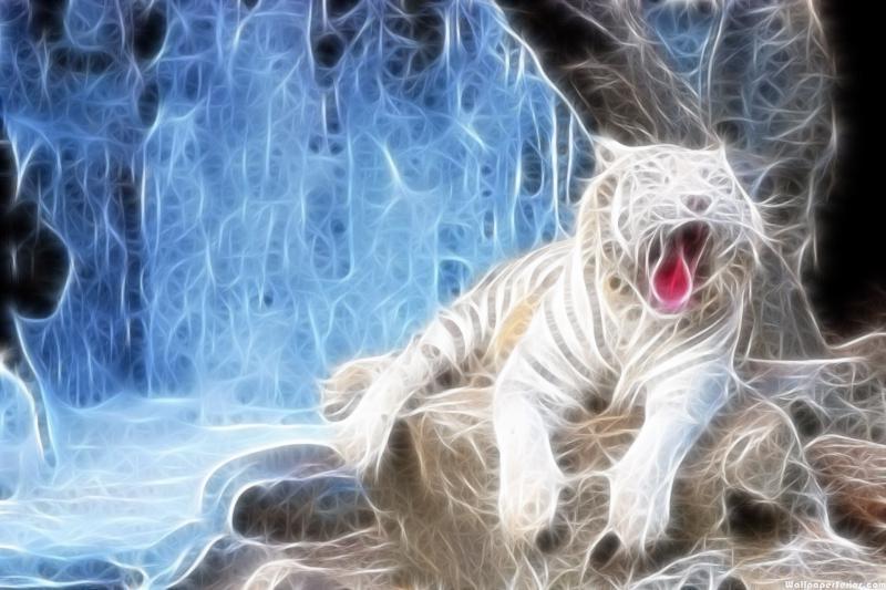 3d Tiger Wallpaper Wallpapersafari